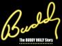 Buddy: The Buddy Holly Story 2015